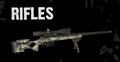 Custom Rifle Models